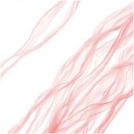 Pink Fairy Ribbon